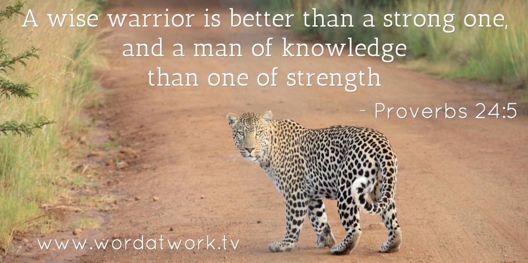 Wisdom is better than strength